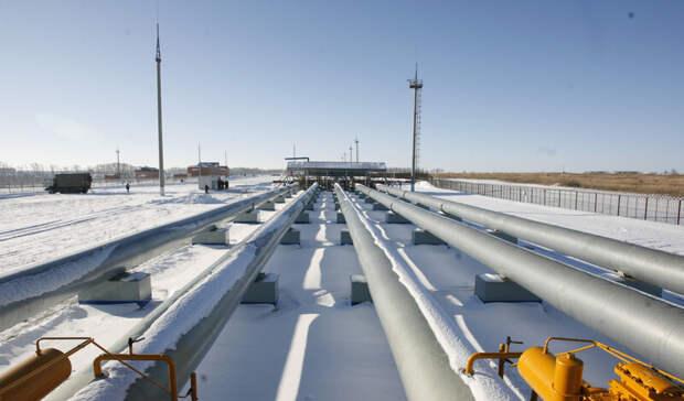 «Газпром» нашел след динозавра