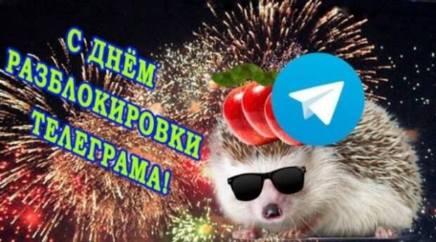 Мемы и приколы про отмену блокировки Telegram