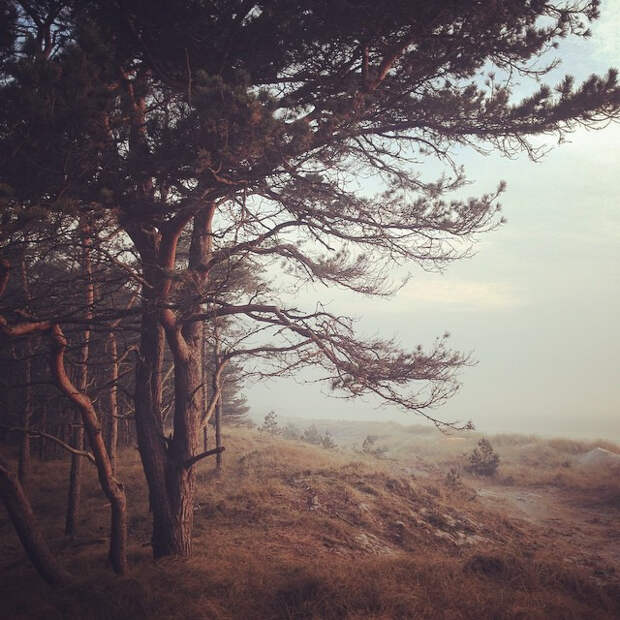 fotograf-Kalle-Gustafsson 2