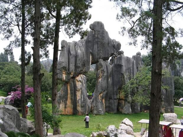 kamenniles 4 Чудеса света: каменный лес Шилинь в Китае