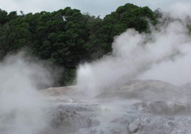 Роторуа — новозеландская Долина гейзеров в миниатюре