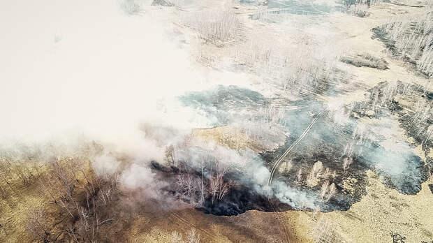 МЧС с высоты птичьего полета показало, как горят поля в Омской области