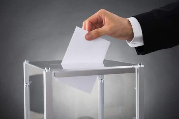 А что, если демократические выборы – фуфло одно?