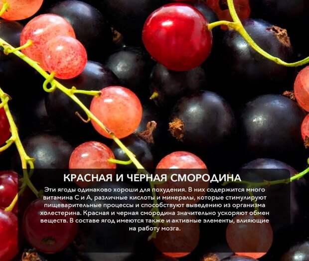 Летние ягоды для нашего организма