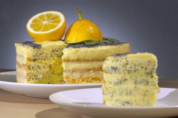 Лимон спешит на помощь. / Фото: superkuhen.ru
