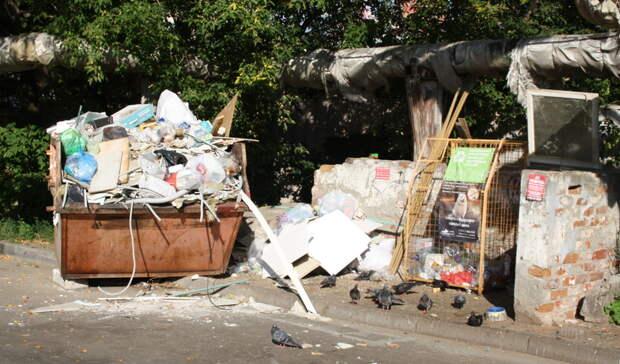 Жители поселка под Казанью пожаловались насвалку. Сюда свозят животные потроха