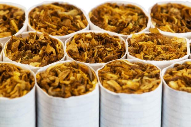 Закон о единой минимальной цене на табак приняли в Госдуме