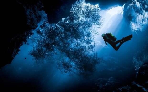 «Уникальная находка»: в море у берегов Балаклавы нашли корабль римской эпохи