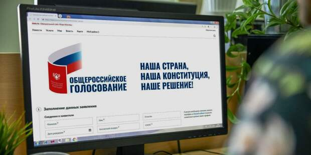 Навальный и поправки. Е. Сатановский