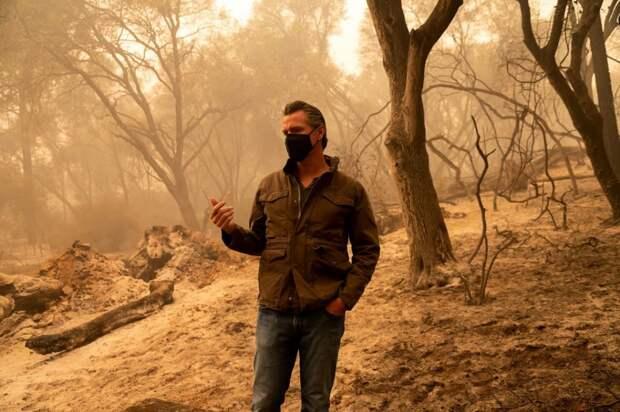 Губернатор Калифорнии назвал причину масштабных пожаров в США