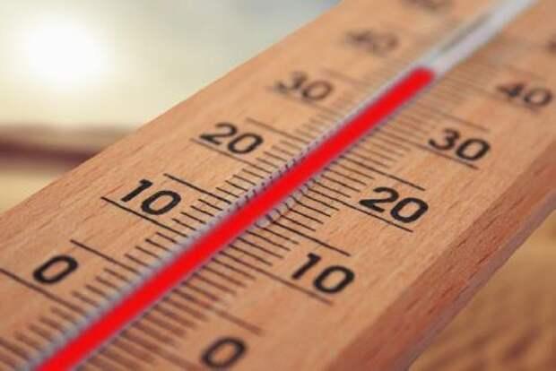 В Тамбовской области ожидается аномальная жара