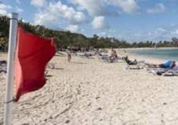 Ядовитые медузы атаковали пляжи Италии