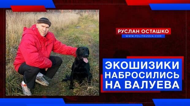 Экошизики набросились на Валуева, предложившего решить проблему агрессивных собачьих стай