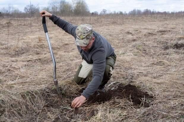 Под Симферополем c 2003 года раскопали 361 погребальное сооружение