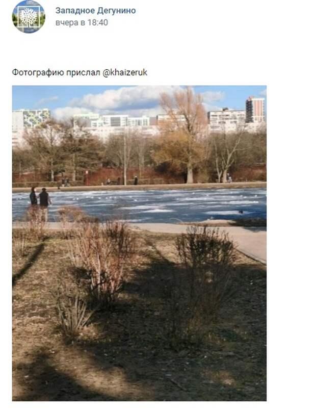 Фото дня: на Ангарских прудах просыпается весна