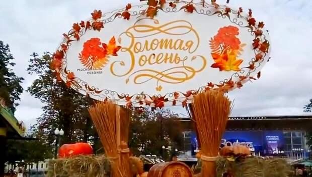 Почти 40 наград получили сельхозпроизводители Подмосковья на выставке «Золотая осень»