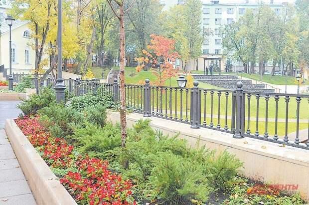 В парках Москвы этой осенью высадят более 8500 именных деревьев