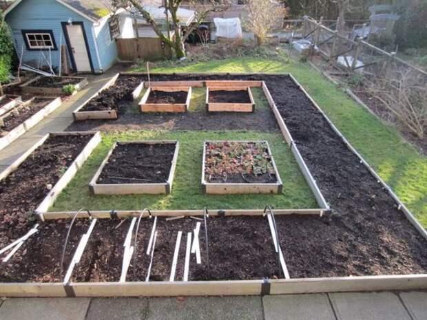 Планировка огорода под посадку овощей — секреты успешного урожая