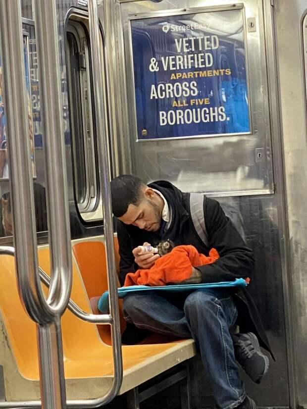 Веру в человечество возвращает фото незнакомца с котенком в метро