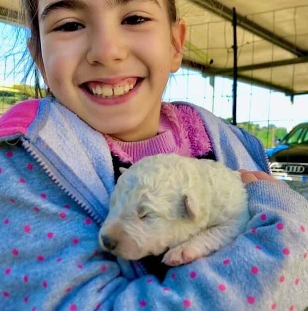 Щенок редчайшего зеленого окраса родился на итальянской ферме