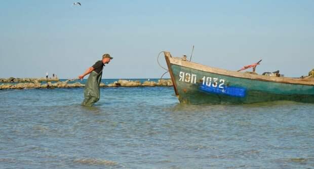 Ситуация с Азовским морем и рекой Дон становится катастрофической