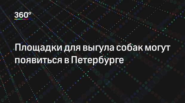 Площадки для выгула собак могут появиться в Петербурге