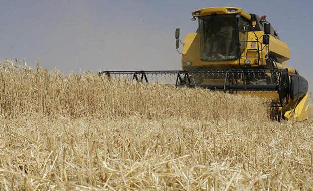 Гонка с русскими за пшеницу бессмысленна