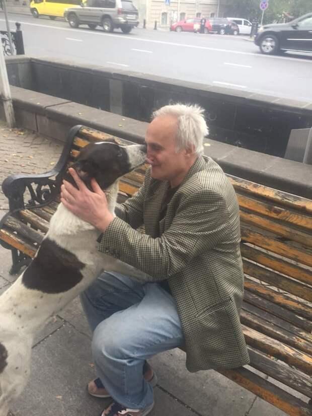 собака и хозяин встретились
