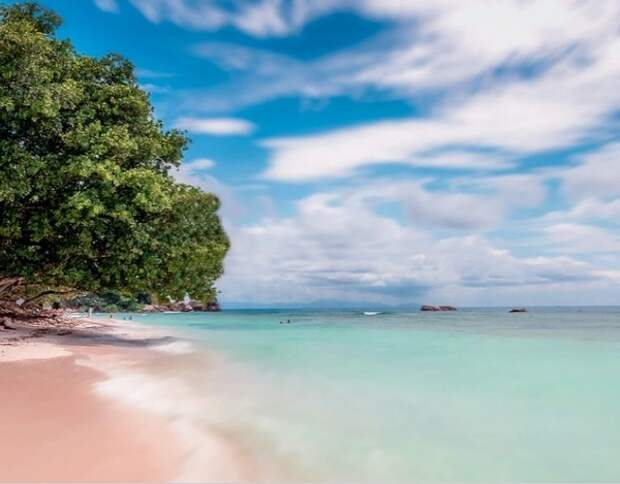 Популярные у туристов страны готовятся смягчать ограничения