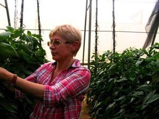 Нина Балашенко - главный технолог Минской овощной фабрики