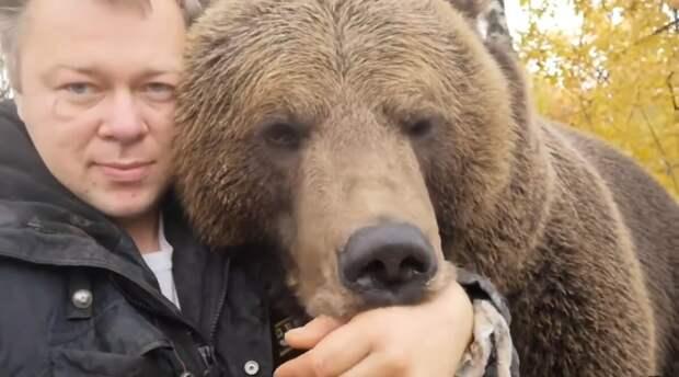 Что стало с медвежонком Мансуром, найденным 5 лет назад на аэродроме и выкормленным лётчиками из бутылочки