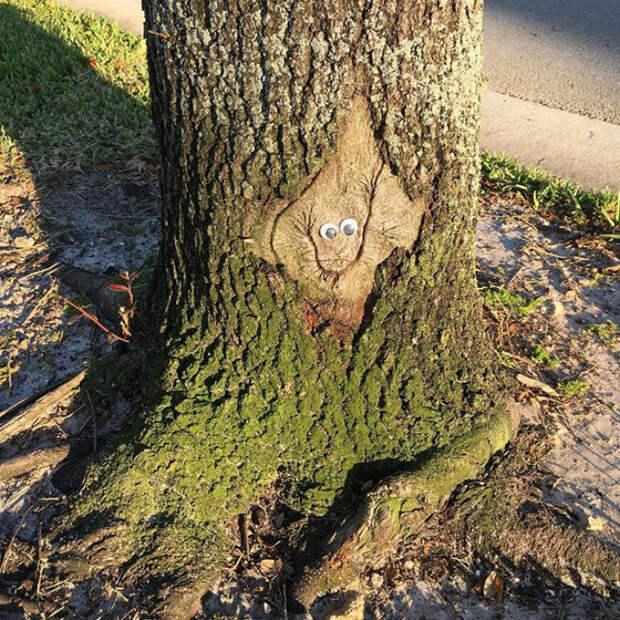 Улыбающееся дерево бегающие глазки, наклейка, юмор