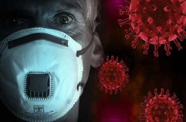 SARS-CoV-2 не пройдет: в ВОЗ оценили грамотные действия эпидемиологической службы РФ