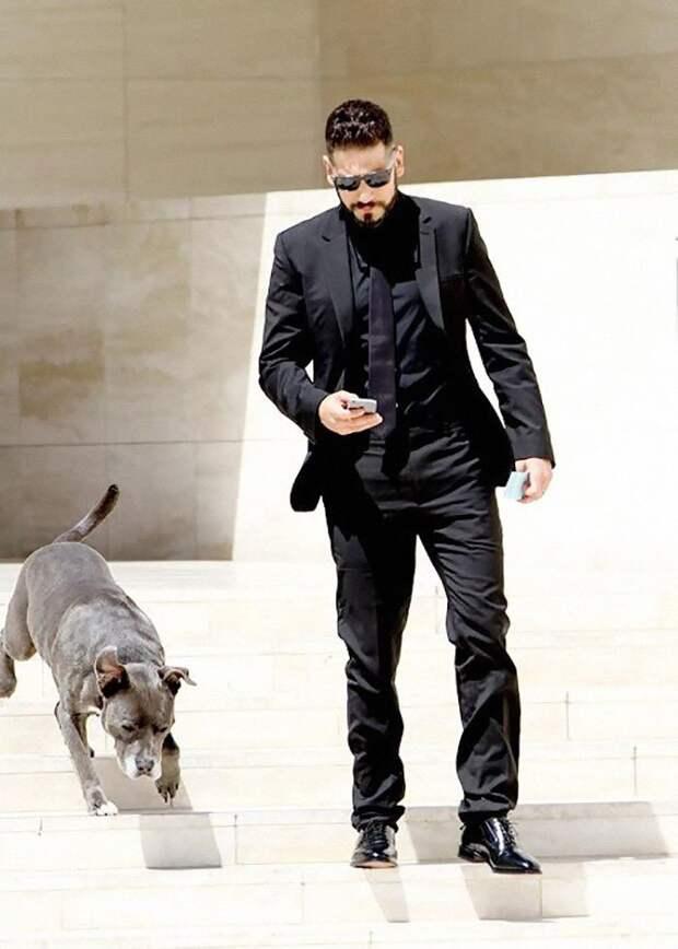 Вот так 41-летний Джон Бернтал выглядит в жизни - строгий черный костюм, черные солнцезащитные очки, и конечно же, питбули! актер, животные, защита животных, звезды, знаменитости, питбули, собаки, фото