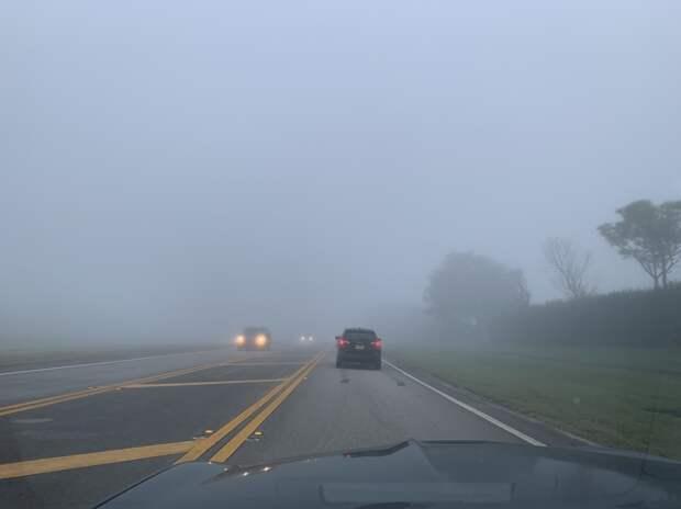 Туман и ухудшение видимости ожидаются в Удмуртии ближайшей ночью