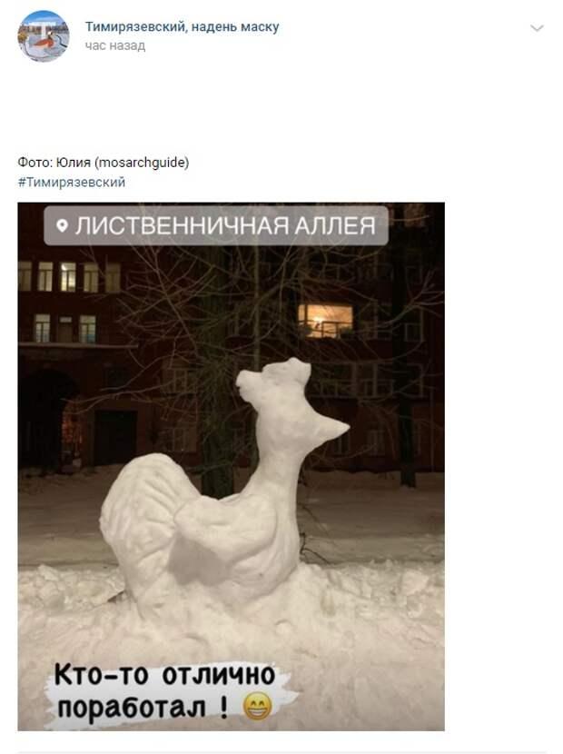 Фото дня: на Лиственничной аллее появился «снежный петух»