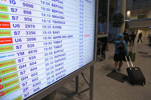 На возобновление чартерных рейсов в Египет уйдёт больше времени