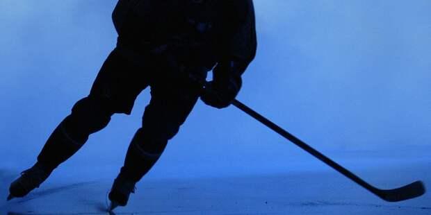 Путин о достижениях отечественного хоккея