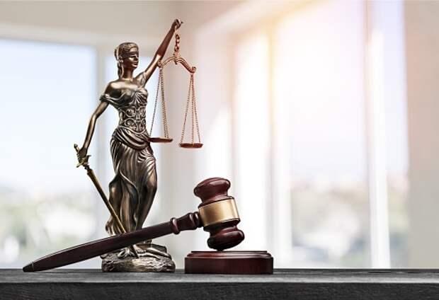 На экоактивистку из Бабушкинского завели уголовное дело