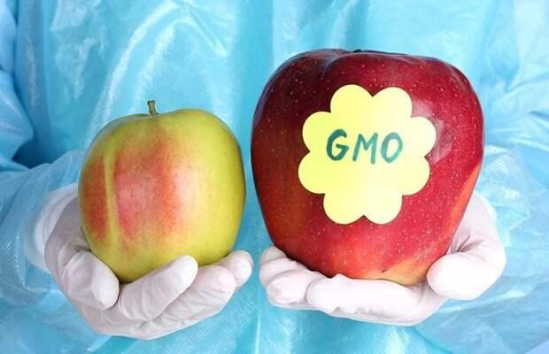 Что означают наклейки на фруктах на самом деле