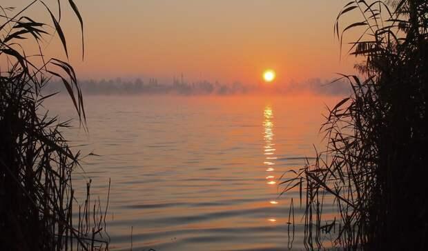 Тело одного из двоих пропавших рыбаков нашли в Ростовской области