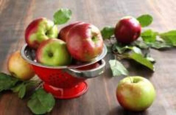 Финны запретили ввозить фрукты из-за пределов ЕС