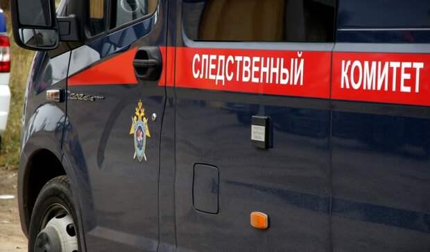 СКзавершил расследование дела вотношении директора центра «Радуга» вБузулуке