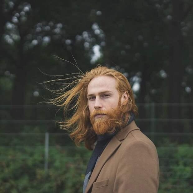 Если и это не убедит вас отрастить бороду, мы не знаем, что еще сможет убедить Круто получилось, борода, внезапно, до и после, изменения внешности, истории из жизни, истории людей, мужская красота