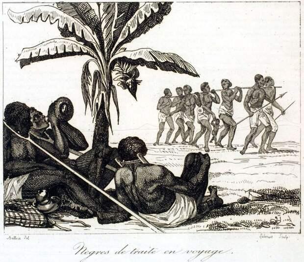 Конвоирование рабов (Сенегал, начало 19 века)