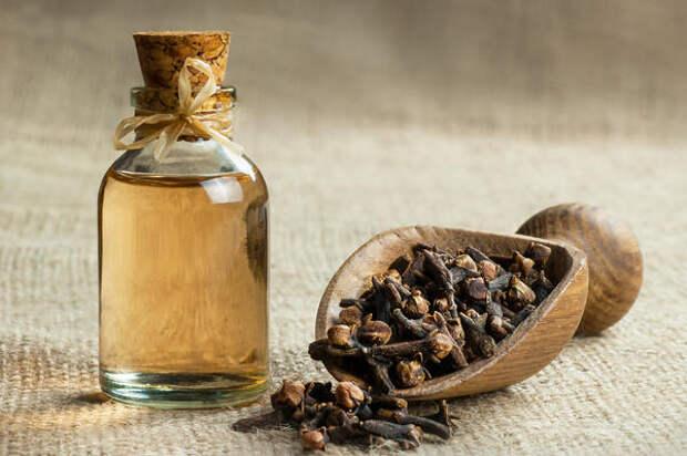 Эфирное масло гвоздики можно использовать как репеллент