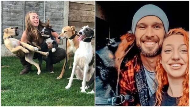 30 семейных фото, которые не были бы такими забавными, если бы не собакены