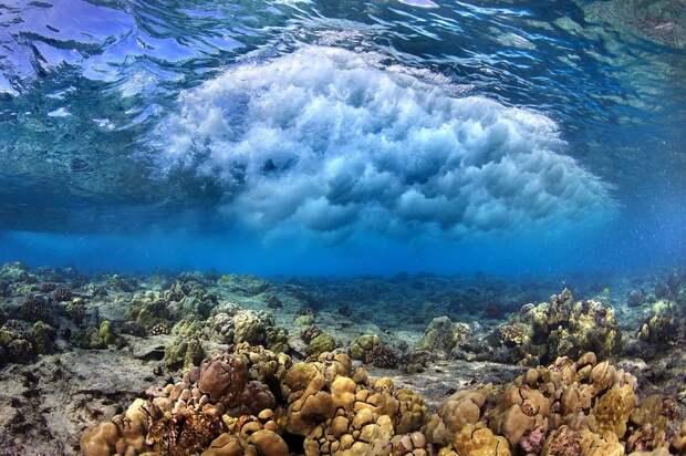 waves03 Невероятные фотографии волн у берегов Гавайских островов
