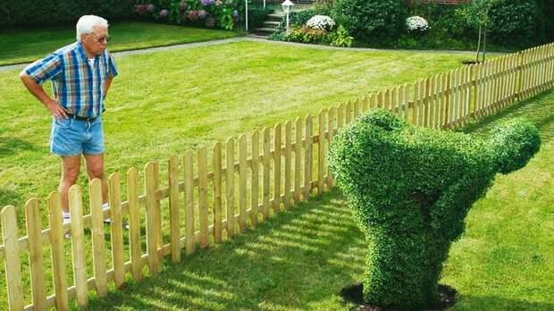 Что делать, если соседи захватили часть вашего участка?