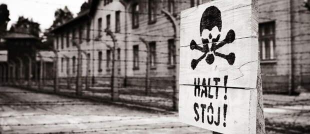 Польша открыто встала на сторону пособников Гитлера